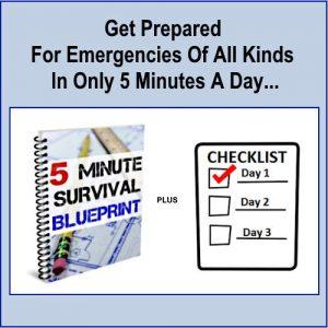 5 Minute Survival Blueprint