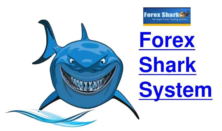 Forex Shark System