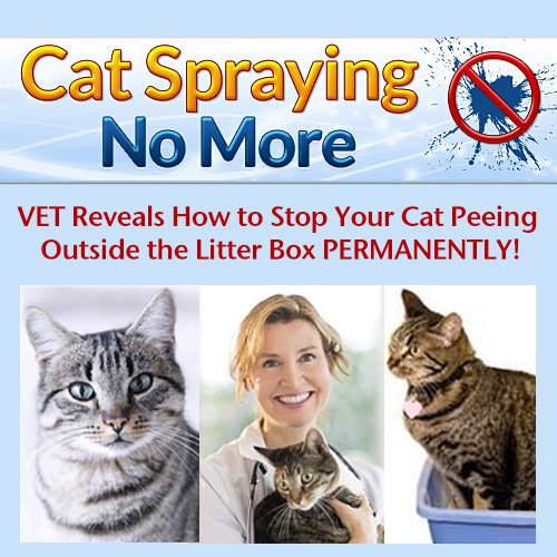 No More Cat Spray