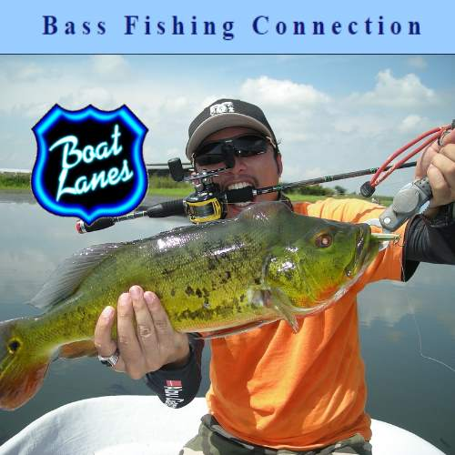 Bass Fishing Connection