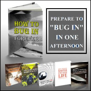 How to Bugin