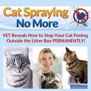 No More Cat Spray