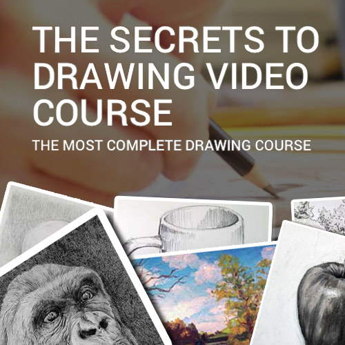 Secrets to Drawing Video Course